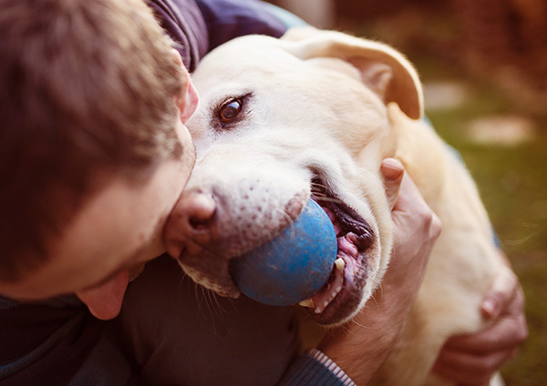 Happy Dog playing with caregiver