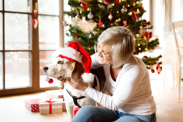 Female with a Pet Dog during the Holidays